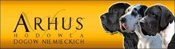 :: ARHUS :: Hodowla Dogów Niemieckich